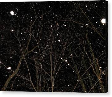 Snowfall Canvas Print by Carlee Ojeda