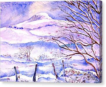 Snowfall On Eagle Hill Hacketstown Ireland  Canvas Print by Trudi Doyle