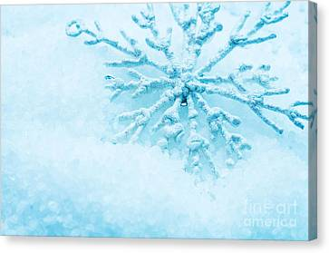 Snowflake In Snow Canvas Print by Michal Bednarek
