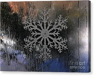Snowflake On A Night Window Canvas Print by Elaine Manley