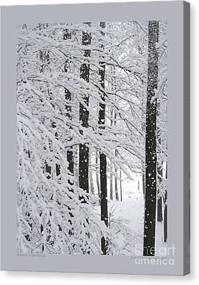 Snowing In The Woods Canvas Print by Patricia Overmoyer