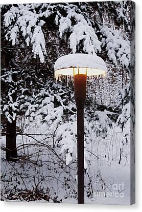 Snowlight Canvas Print by Avis  Noelle