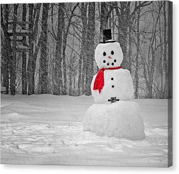 Snowman Canvas Print by Steven Michael