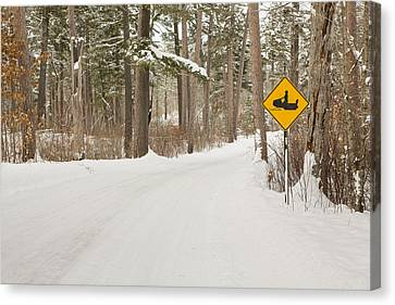 Snowmobile Crossing Canvas Print by Tim Grams