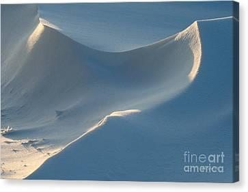 Snowscapes 1 Canvas Print by E B Schmidt