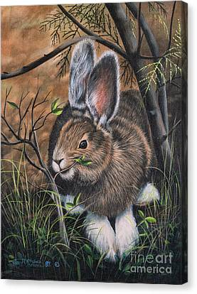 Snowshoe Rabbit Canvas Print by Ricardo Chavez-Mendez