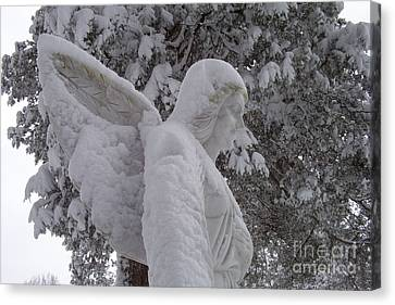 Snowy Angel Canvas Print by Kevin Croitz