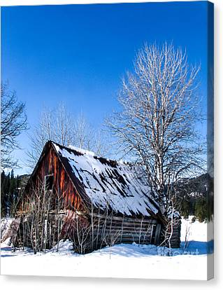 Haybales Canvas Print - Snowy Cabin by Robert Bales
