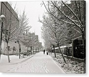 Snowy Day In Madrid Canvas Print by Galexa Ch