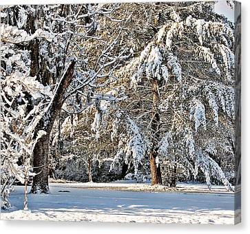 Canvas Print featuring the photograph Snowy Day by Linda Brown