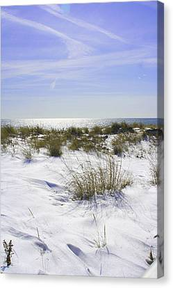 Canvas Print featuring the photograph Snowy Dunes by Karen Silvestri
