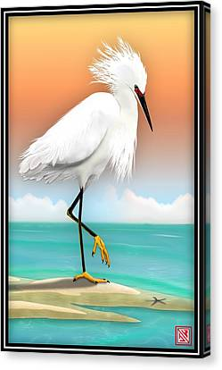 Snowy Egret White Heron On Beach Canvas Print by John Wills
