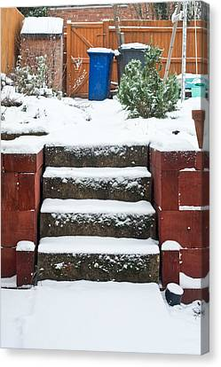Snowy Garden Canvas Print by Tom Gowanlock