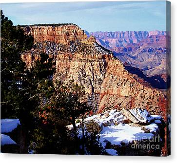 Snowy Grand Canyon Vista Canvas Print by Janice Sakry