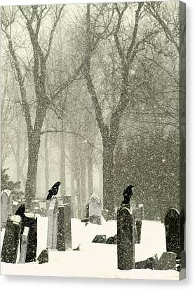 Birds In Graveyard Canvas Print - Snowy Graveyard Crows by Gothicrow Images