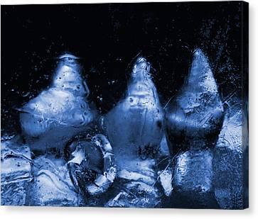 Snowy Ice Bottles - Blue Canvas Print by Sami Tiainen