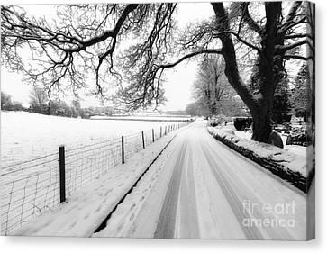 Snowy Lane Canvas Print by Adrian Evans