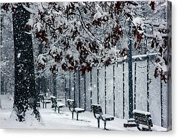 Canvas Print featuring the photograph Snowy Leaves by Andy Lawless