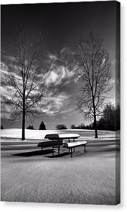 Snowy Morning In Black And White Canvas Print by Dan Sproul