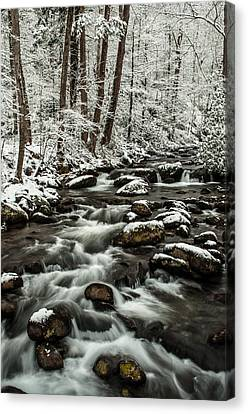 Canvas Print featuring the photograph Snowy Mountain Stream by Debbie Green