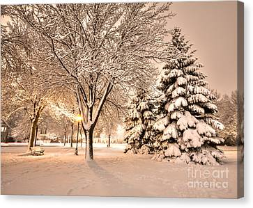 Canvas Print featuring the photograph Snowy Night At Windom Park by Kari Yearous