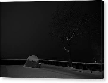 Snowy Night Canvas Print by Mike Horvath