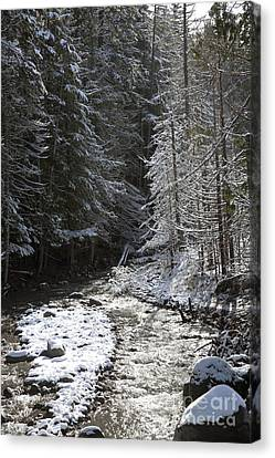 Snowy Oregon Stream Canvas Print by Peter French