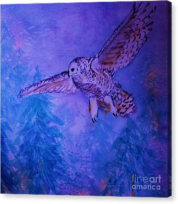 Snowy Owl  - Juvenille - Close Cropped Canvas Print by Ellen Levinson