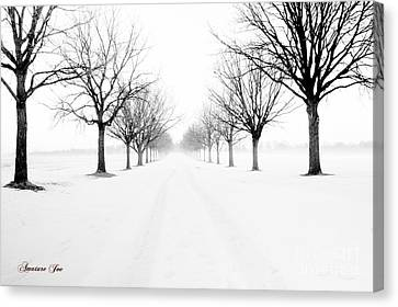 Snowy Path Canvas Print by Joe Russell