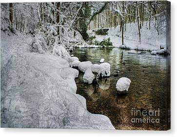 Snowy River Bank Canvas Print by Ian Mitchell