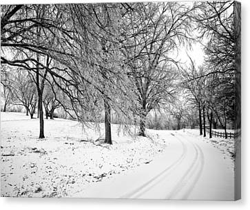 Snowy Road Canvas Print by Eric Benjamin