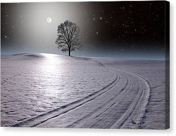 Canvas Print featuring the photograph Snowy Road by Larry Landolfi