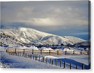 Snowy Scene Canvas Print by Matt Helm