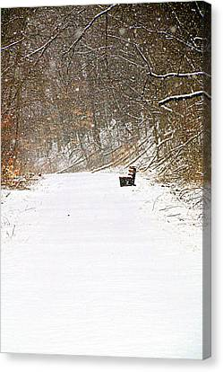 Snowy Seat Canvas Print by Andrea Dale