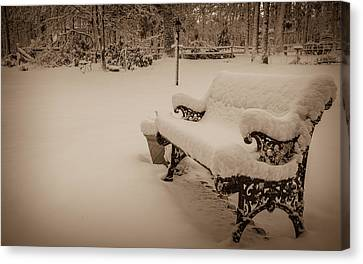 Canvas Print featuring the photograph Snowy Sepia by Glenn DiPaola