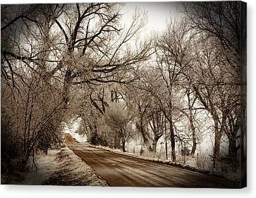 Snowy Trail Canvas Print by Shirley Heier