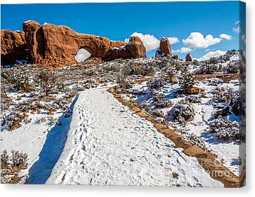 Snowy Trail To The North Window Canvas Print by Bob and Nancy Kendrick