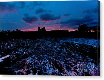 Snowy Twilight Canvas Print by Michelle Wiarda