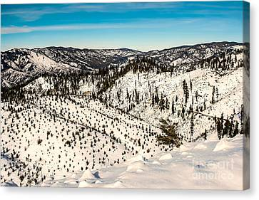 Snowy View Canvas Print by Robert Bales