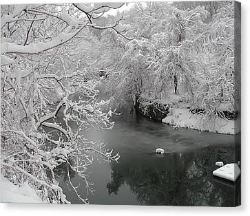 Snowy Wissahickon Creek Canvas Print by Bill Cannon