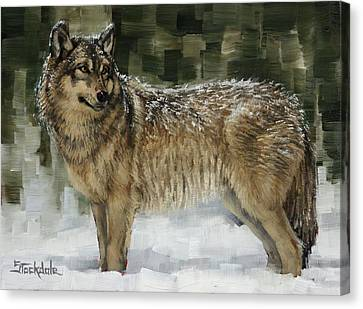 Snowy Wolf Canvas Print by Margaret Stockdale