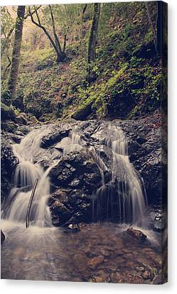 Falling Water Creek Canvas Print - So Easy To Fall by Laurie Search