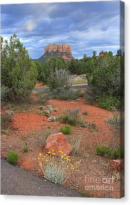 So Long Sedona Canvas Print by Carol Groenen