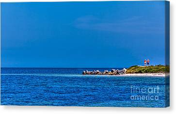 So This Is The Gulf Of Mexico Canvas Print by Marvin Spates