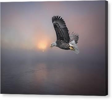 Soaring At Sunrise Canvas Print by Thomas Young