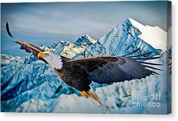 Soaring Bald Eagle Canvas Print by Gary Keesler