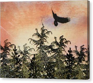 Soaring Eagle In The Adirondack Mountains Canvas Print