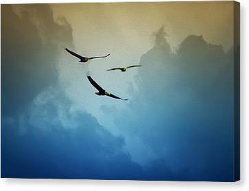 Soaring Eagles Canvas Print by Bill Cannon