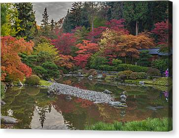 Soaring Fall Colors In The Arboretum Canvas Print by Mike Reid