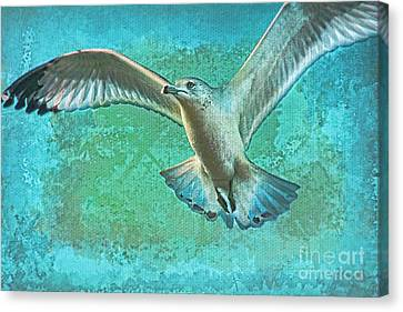 Soaring On Lifes Air Drafts Canvas Print by Deborah Benoit